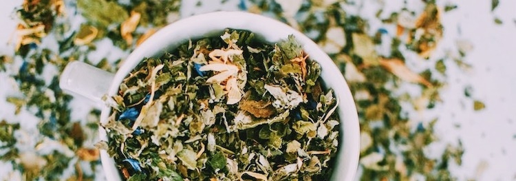 Top 5 Adaptogens for Fall and Winter