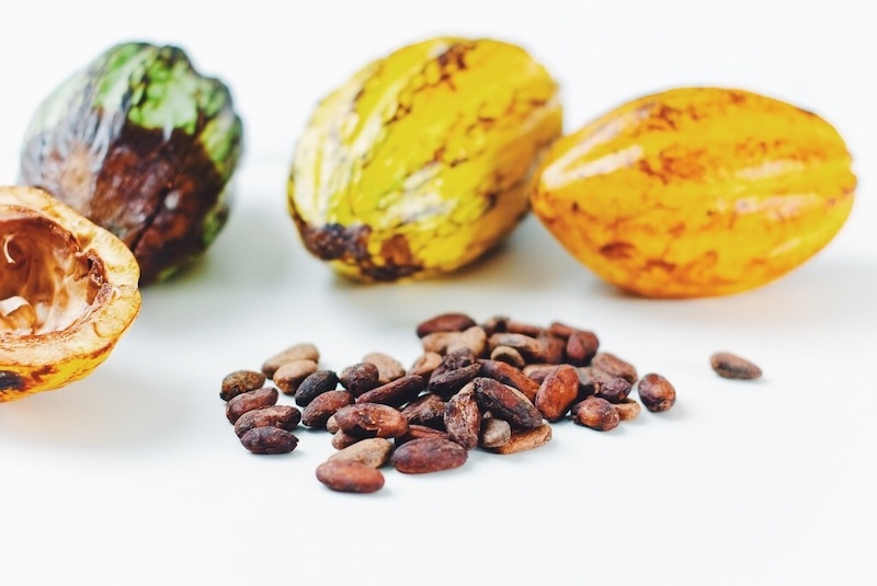 The Many Benefits of Raw Chocolate